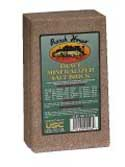 Ranch House Trace Mineral Salt Block.jpg