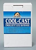 cool cast bndg.jpg